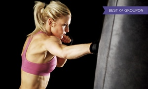 Triangle Krav Maga: 5 or 10 Cardio Kickboxing or Krav Maga Classes at Triangle Krav Maga (Up to 78% Off)