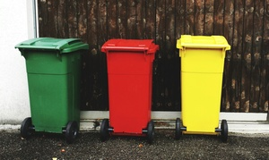 London Bin Hygiene: Up to 12 Monthly Wheelie Bin Cleaning for One or Two Bins from London Bin Hygiene (Up to 67% Off)