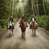 45% Off Horse Back Riding - Recreational