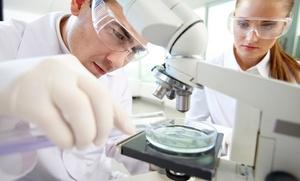 Test de intolerancia por análisis de sangre o plan de adelgazamiento por 59,95 € o test genético de Adn por 69,95 €
