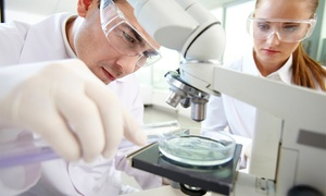 CLINICA NUTRICION 81: Test de intolerancia por análisis de sangre o plan de adelgazamiento por 59,95 € o test genético de Adn por 69,95 €