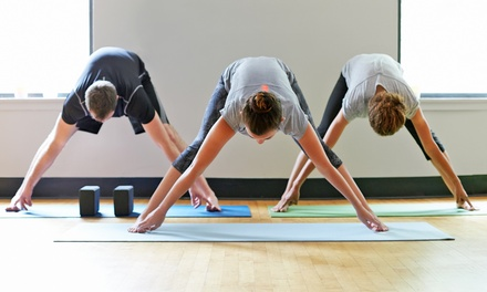 12 Yoga Classes or One Month of Unlimited Yoga Classes at Shrine Studio (Up to 53% Off)