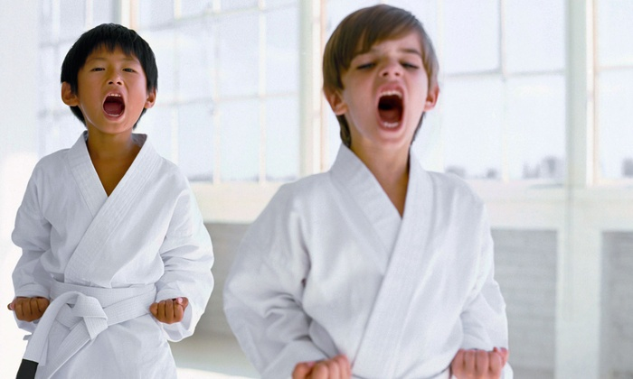 Kickaro's Martial Arts & Fitness - Danbury: 6 or 12 Kids' Karate Classes at Kickaro's Martial Arts & Fitness (Up to 83% Off)
