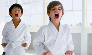 Kickaro's Martial Arts & Fitness: 6 or 12 Kids' Karate Classes at Kickaro's Martial Arts & Fitness (Up to 83% Off)