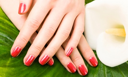 One or Two OPI Gel Color Manicures at Jackie Rays Studio (Up to 57% Off)