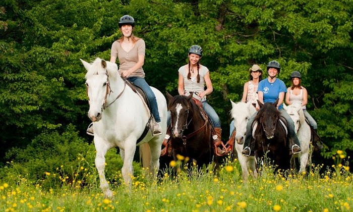 Carousel Horse Farm - Carousel Horse Farm: Beginner Trail Ride for One or Two from Carousel Horse Farm (Up to 57% Off)