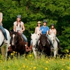 Up to 57% Off Trail Ride from Carousel Horse Farm