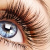 Up to 76% Off Eyelash Extensions at Sugoi Nails And Spa