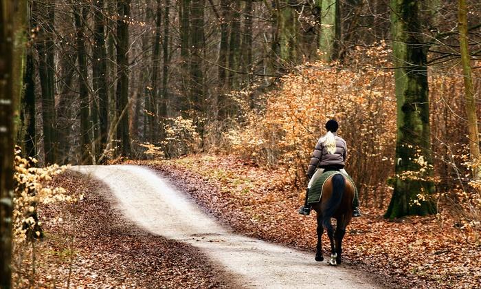 RG Horsemanship - Adairsville: $32.99 for a Holiday Horseback Trail-Ride for Two at RG Horsemanship ($200 Value)