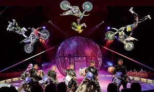 Circo Medrano: Circo Medrano dal 4al 7 febbraio a Livorno - biglietti in tribuna o poltrona (sconto fino a 67%)