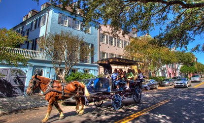 Carriage Tour for One, Two, or Four on a Group Carriage from Carolina Polo and Carriage Company (Up to 28% Off)