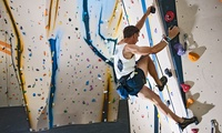 One-Hour Introduction to Indoor Climbing for One at Avertical World (50% Off)