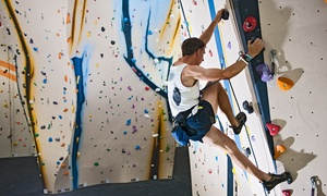 Slidell Rocks Climbing Gym: All-Day Pass for One or Two for Indoor Rock Climbing and Bouldering at Slidell Rocks Climbing Gym (45% Off)