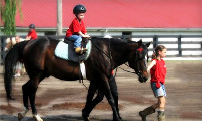 Louisville Equestrian Center - East Louisville: Three Horseback-Riding Lessons for One, One Group Lesson, or Pony Party at Louisville Equestrian Center (Up to 55% Off)