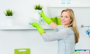 MM (Magenta): Fino a 24 ore di pulizie per appartamenti, uffici, negozi e centri commerciali (sconto fino a 72%)