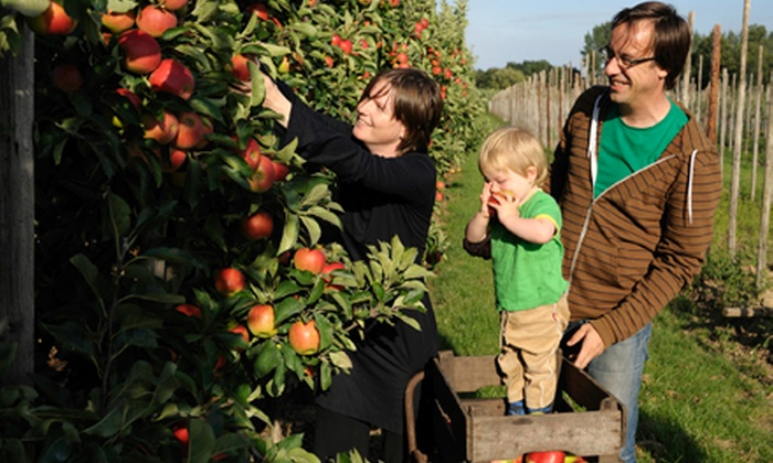 Hillcrest Orchard - Amherst: $11 for an Orchard Day for Four at Hillcrest Orchard (Up to $22 Value)
