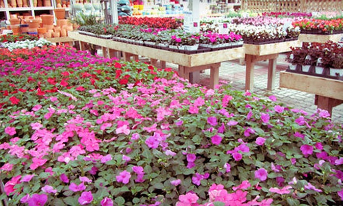 Stadler Nurseries - Multiple Locations: $25 for $50 Worth of Plants and Gardening Accessories at Stadler Nurseries