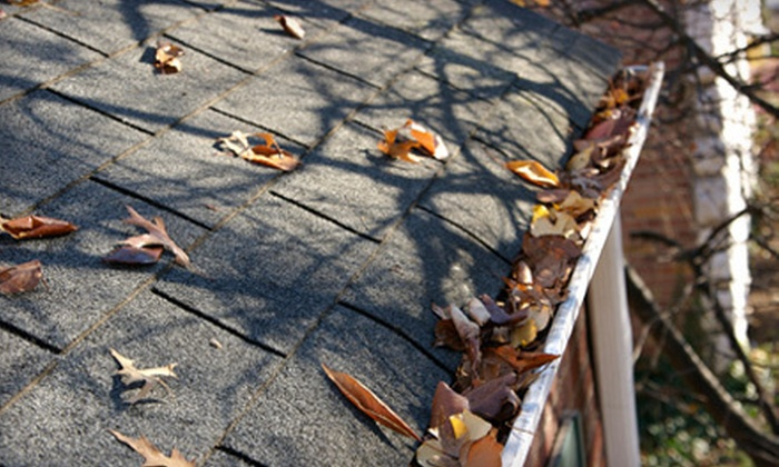 White Lion Moss Removal - Eugene: Gutter Cleaning with Optional Moss Removal or Moss Treatment from White Lion Moss Removal (Up to 51% Off)