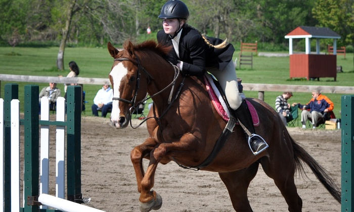 Dunham Woods Farms, Inc. - Plato: Two Horseback-Riding Lessons at Dunham Woods Farm (50% Off)