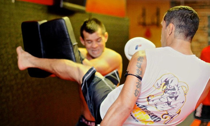 The MMA University - Singac: 10 or 20 MMA or Fitness Classes at The MMA University (Up to 85% Off)