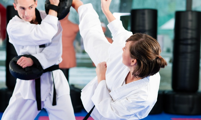SPARTANFIT MMA - Justin-Roanoke: $43 for $173 Worth of Martial-Arts Lessons — Spartan Fit Mma self defense and sports