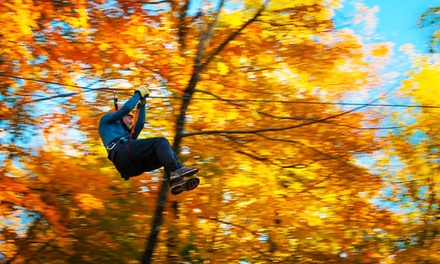 $42 for a Three-Hour Zipline Adventure for Two at Camp Fortune (Up to $70 Value)