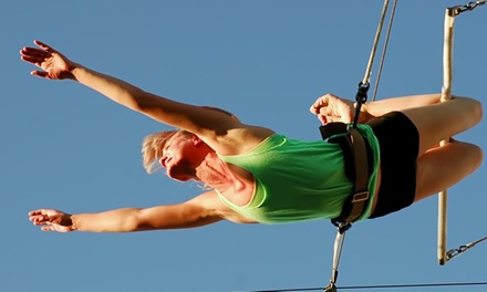 90-Minute Trapeze Session for Two or Four at Trapeze Las Vegas (Up to 50% Off)
