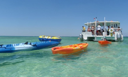 $25 for a 3-Hour Weekday Island Adventure Miami Day Cruise and Tour from Tropical Sailing Up to $50Value)