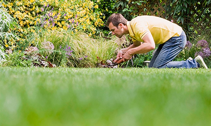 Visual Yards Irrigation - Fort Worth: $52 for $95 Worth of Services at Visual Yards Irrigation