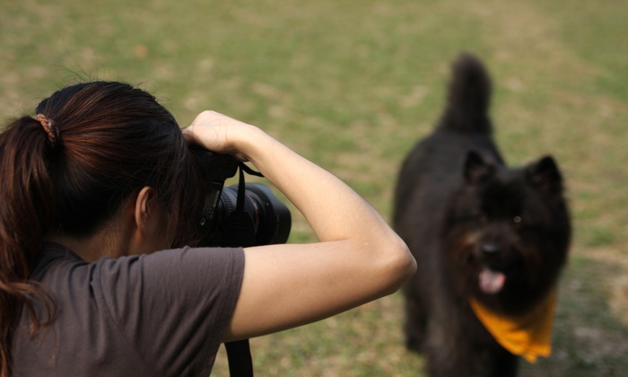 Give A Thousand Words - Los Angeles: 180-Minute Photography Class and Walking Tour at Give a Thousand Words (44% Off)