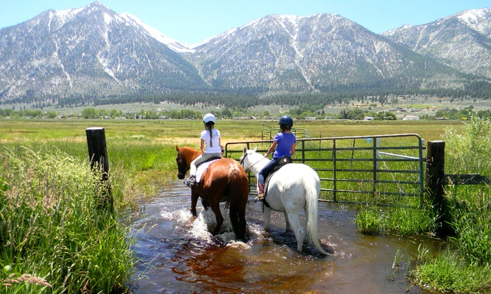 Sheridan Creek Equestrian Center - Gardnerville: Private Horseback-Riding Lesson for Two or One-Hour Trail Ride for Two at Sheridan Creek Equestrian Center (50% Off)