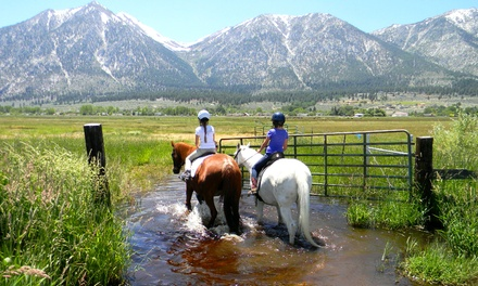 Private Horseback-Riding Lesson for Two or One-Hour Trail Ride for Two at Sheridan Creek Equestrian Center (50% Off)