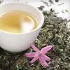 Up to 59% Off Tea for Two in West Hollywood