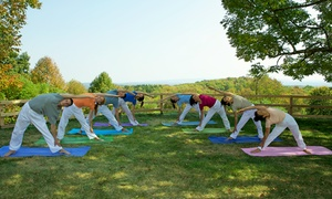 Sivananda Ashram Yoga Ranch: Two-Night Catskills Yoga Retreat for One or Two at Sivananda Ashram Yoga Ranch (Up to 51% Off)