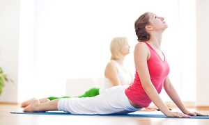 The Yoga Pilates Place - City Centre: Five Yoga Classes for One or Two at The Yoga Pilates Place (Up to 57% Off)