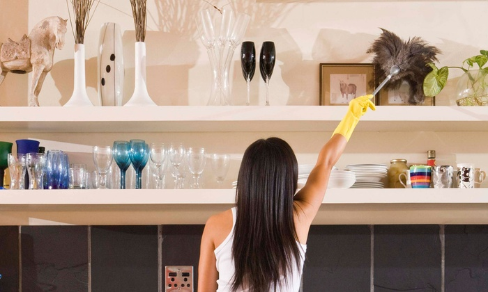 Dust Buneez - Orlando: One, Three, or Five Hours of Housecleaning from Dust Buneez (Up to 71% Off)