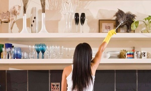 Dust Buneez: One, Three, or Five Hours of Housecleaning from Dust Buneez (Up to 71% Off)