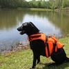 Aussie Naturals Dog Life Vests