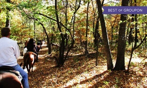 Jester Park Equestrian Center: Riding Lesson, Campout, or Trail Ride at Jester Park Equestrian Center (Up to 50% Off). Five Options Available.