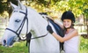 mh Equine Solutions - Bristol: Horseback-Riding Lesson for Two or Pony Party for Up to 10 at Madison Horse Connection in Sun Prairie (Up to 57% Off)