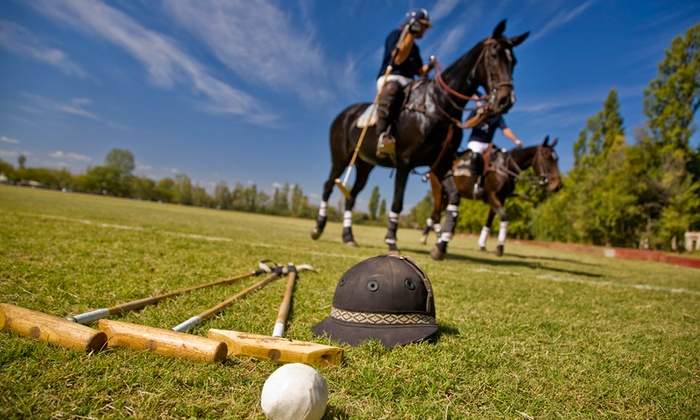 Stage Hill Polo - Stage Hill Polo: Introductory Polo Experience for 1, 2, 4, or Up to 10 at Stage Hill Polo (Up to 84% Off)