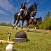 Polo Lesson for One or Two
