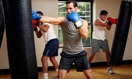 $45 for One Month of Unlimited Boxing Classes at USA Karate ($200 Value)