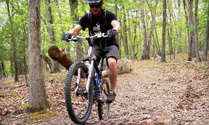 Shenandoah Trail Cruisers - Luray: Three-Hour or Full-Day Bike Tour with Lunch and Beer Flight for Two from Shenandoah Trail Cruisers (Up to 74% Off)
