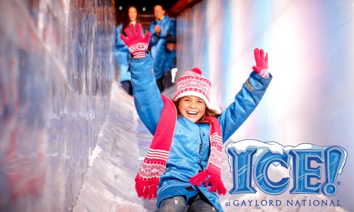 ICE! at Gaylord National Resort - National Harbor: $212 for Four to ICE!, $50 Food Credit, plus a free Hotel Room at Gaylord National (Up to $518.30 Value)