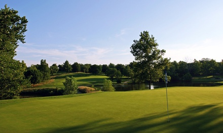 18 Holes of Golf with Cart Rental for Two or Four at The Deuce at the National (Up to 51% Off)