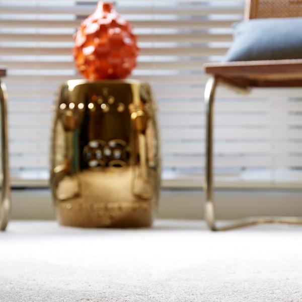 Carpet Cleaning Bwood Tn Carpet Vidalondon