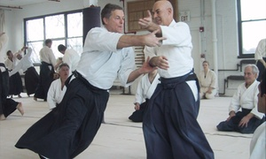 Shobu Aikido of Boston: $230 for $425 Worth of Martial-Arts Lessons — Shobu Aikido of Boston