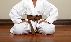 Master Y.J. Kim's Martial Arts: $59 for $169 Worth of Services — Master Y.J. Kim's Martial Arts Center