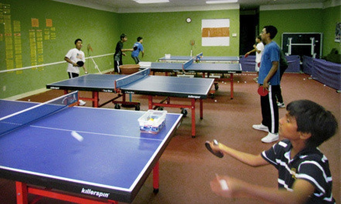 Fremont Table Tennis Academy - Warm Springs: Four weekday or weekend table tennis lessons